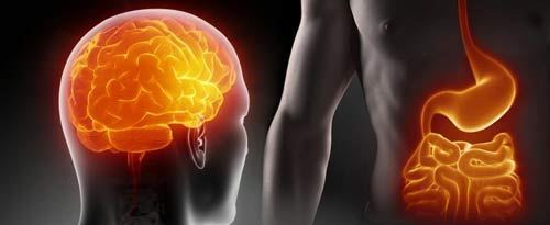 Enteric Brain Technique™